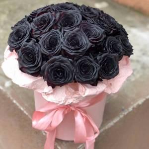 Коробка 19 черных роз с оформлением R834