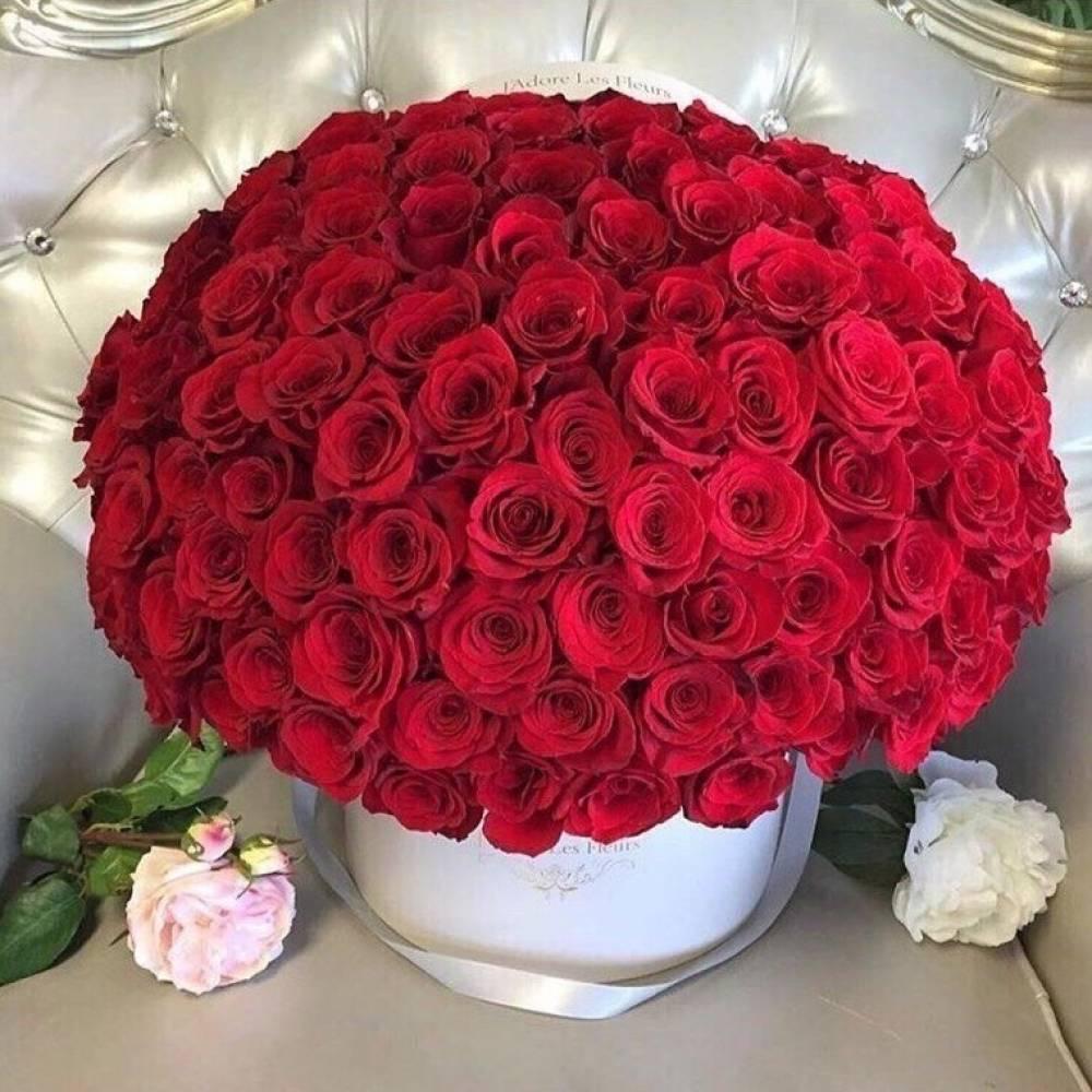 курсов появляется самые красивые в мире букеты роз фотографии внес огромный вклад