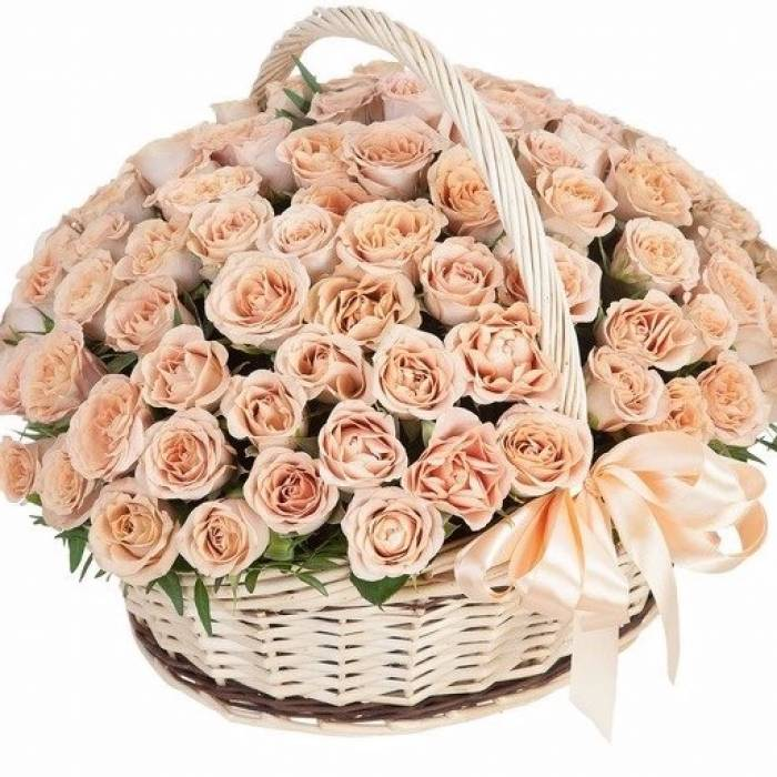 75 роз капучино в корзине R025