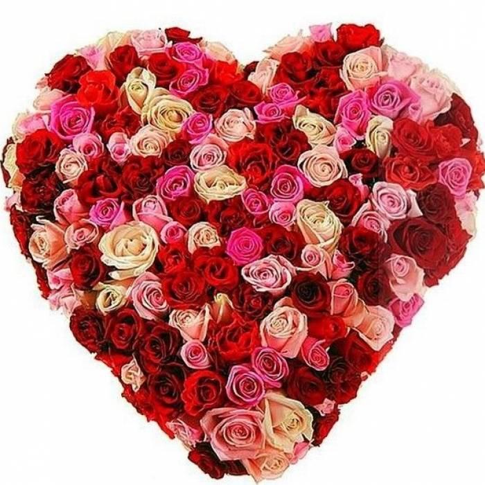101 разноцветная роза в виде сердца R388