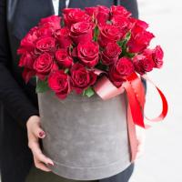 31 красная роза в коробке с лентами R473